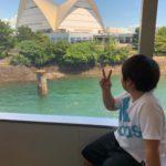 遠足(桜島フェリー)